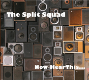 cover of The Split Squad  Now Hear This...